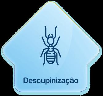 Descupinização - Dedetizadora em Salvador, Goiânia e Palmas...